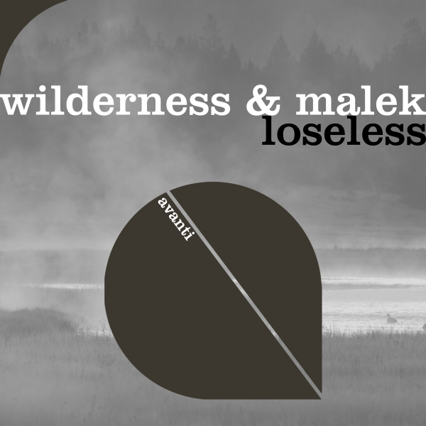 Wilderness & Malek - Loseless [Avanti]