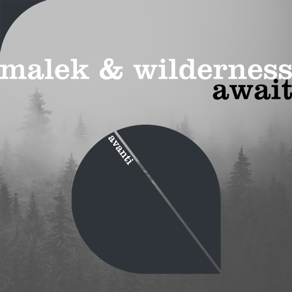 Malek & Wilderness - Await [Avanti]